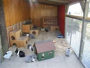 bilder eurer kaninchenstalle und aussengehege kaninchen With katzennetz balkon mit essential garden parfum