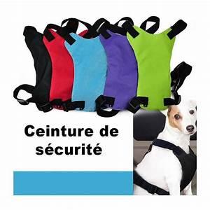 4a814b06216 Ceinture De Sécurité. extension rallonge de ceinture de s curit ...