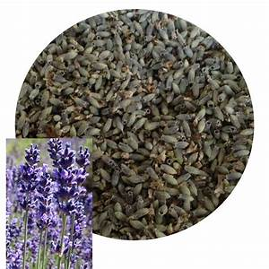 Purifier Mots Fléchés : herboristerie ~ Maxctalentgroup.com Avis de Voitures