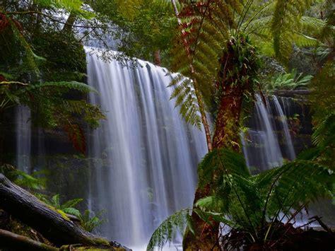 tropical waterfall jungle paprat desktop wallpaper full