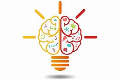 Learning Neuroscience Elements Brain Learn Visual Learner