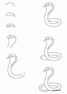 615 Best Reptile Drawings Images On Pinterest