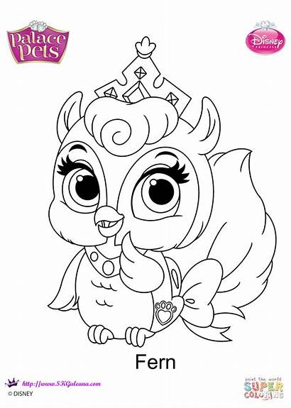 Coloring Pets Palace Pages Fern Printable Drawing