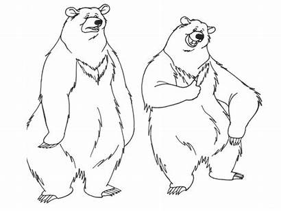 Coloring Pages Bear Funny Printable Realistic Bears