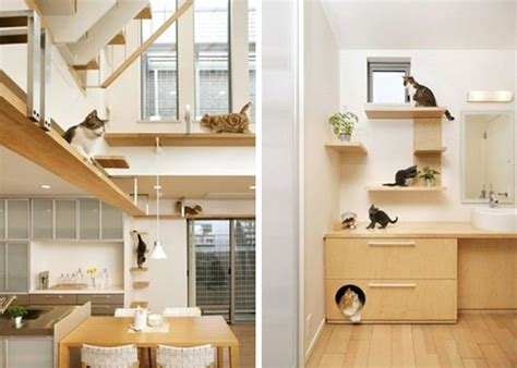 cat house designs unbelievable cat friendly house design from japan hauspanther