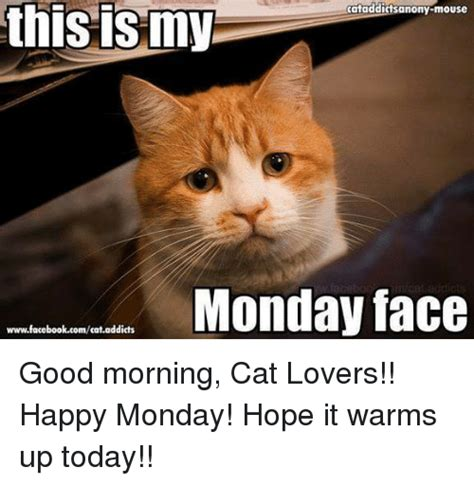 Cat Lover Meme - this my cataddictsanony mouse monday face wwwfacebookcomcataddicts good morning cat lovers