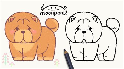 chow chow drawing youtube