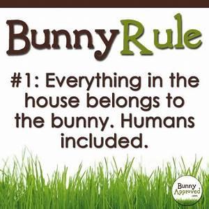 Bunny Rules | B... Konijnen Quotes