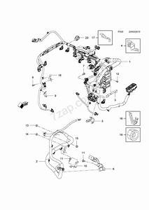Engine And Fuel Injection Wiring Harness Fittings  A14net