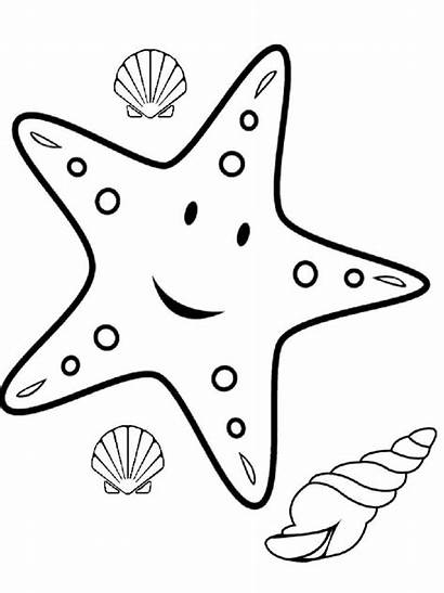 Starfish Coloring Pages Animal