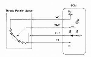 Jun Ming Liu  Input Sensors And Actuator On