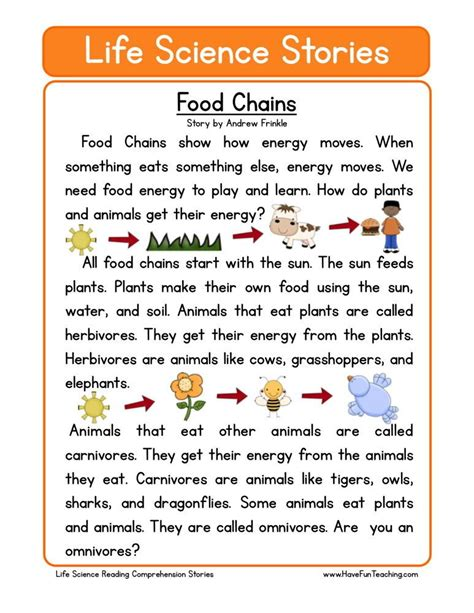 food chains education reading