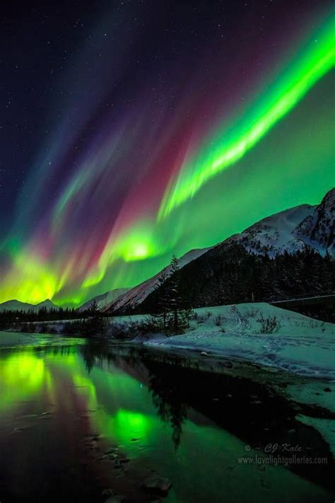 alaska northern lights les 25 meilleures id 233 es de la cat 233 gorie alaska sur