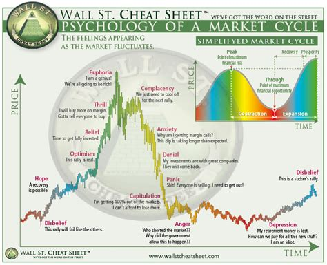 psychology  market cycles   person