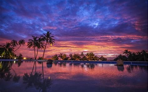 Dive Bora Bora Original Diving