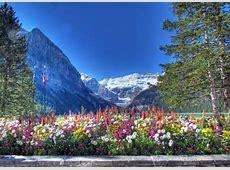 Peisaje de vara 70 de imagini superbe cu anotimpul