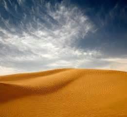 9Decosystem - Desert