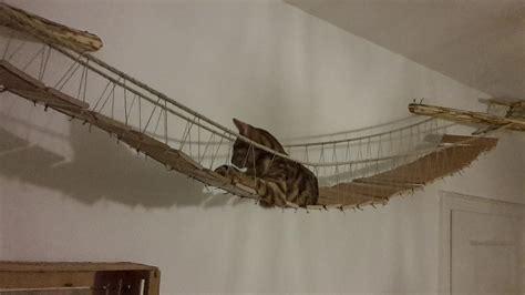 Katzen Wandbrett Selber Bauen by Katzen Kletterwand Kaufen Selber Zusammenstellen Tolle