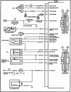 I Need A Wiring Schematic For An 88 C10 Ecm Identifing Pin Numbers Wire Color For The Two Plugs