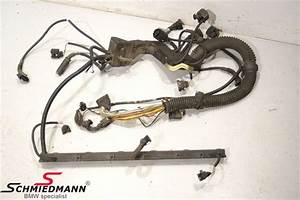 E64 Bmw Engine Wiring Harness