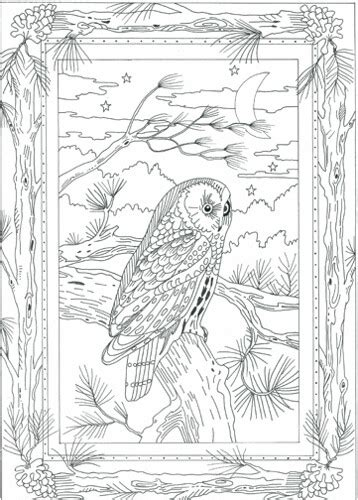 night owl embroidery pattern flickr photo sharing
