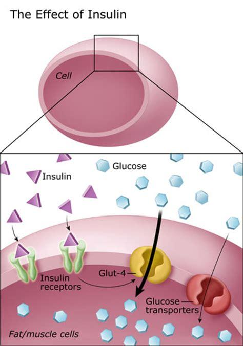 controlling blood sugar diabetes education
