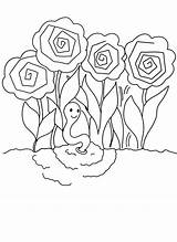Coloring Pages Peony Printable sketch template