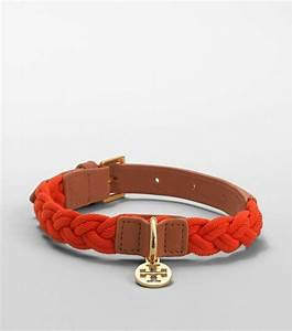 best 25 girl dog collars ideas on pinterest cute dog With girl dog collars