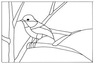 black capped chickadee pattern bird bird