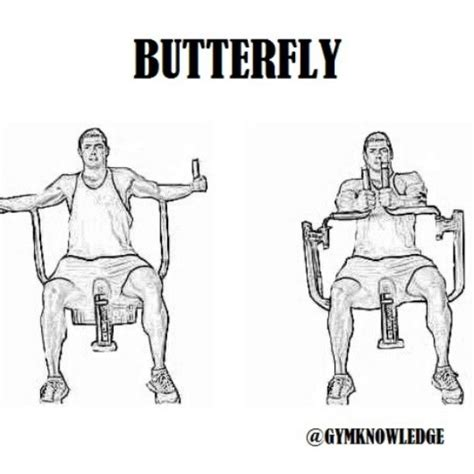 pec deck fly muscles worked tap for more gymknowledge butterfly also known as