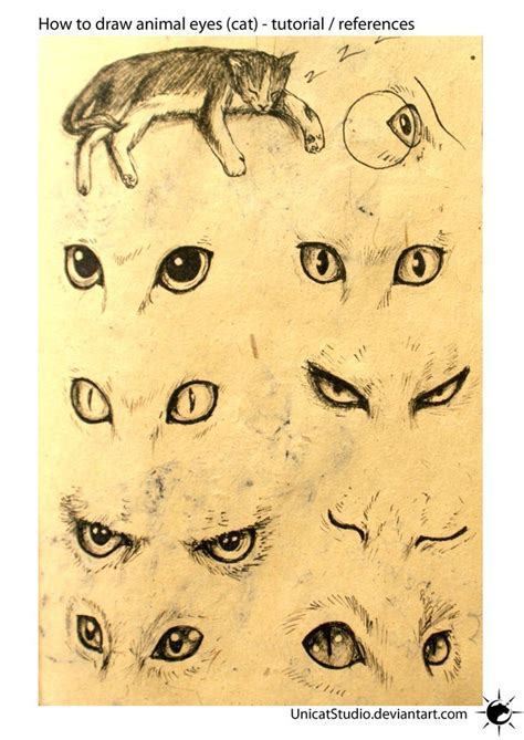 draw eyes ideas  pinterest eye drawing