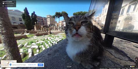 finden sie die skurrilsten google street view aufnahmen