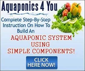 Organic Gardening Secret For Growing Plants Abundantly And