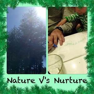 nature versus nurture debate essay character profile creative writing robot description creative writing