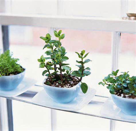 Indoor Herb Garden Pot Planters Ideas by 25 Cool Diy Indoor Herb Garden Ideas Hative
