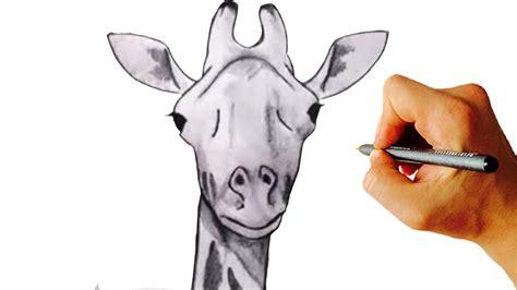 draw  giraffe  simple step  step drawing