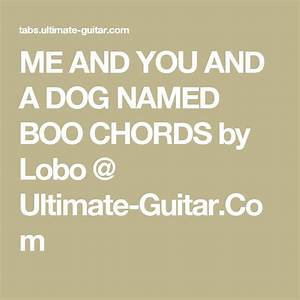 Ultimate Guitar Chord Chart Pdf Me And You And A Dog Named Boo Chords By Lobo Ultimate