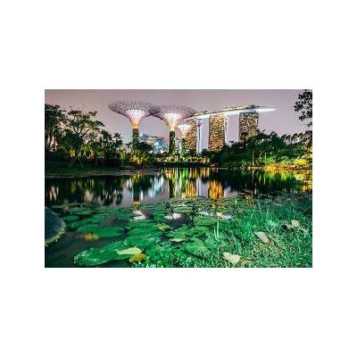 Interesting Facts about Gardens by the Bay