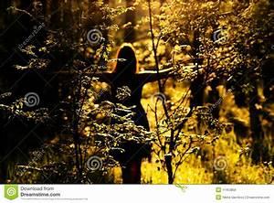 Frau Im Bild : frau im wald am sonnenuntergang stockfoto bild 11453856 ~ Eleganceandgraceweddings.com Haus und Dekorationen