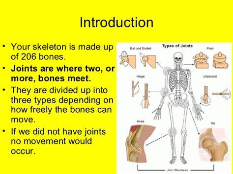 L10a Different Kinds Of Joints