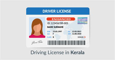 How To Apply For Dl In Kerala?