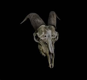 Goat Skull Mask Baphomet Satanic Demon Occult Wearable