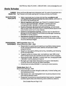 Resume Example 74 Account Executive Resume Sample Account