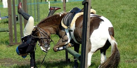 horse injuries related humans blame falling might riders were pony rider pinto accidents involving judgement preventable considered handler experts poor