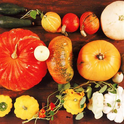 idée de légumes à cuisiner 4 idées gourmandes pour cuisiner les légumes oubliés