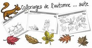Feuilles D Automne à Imprimer : coloriages d 39 automne ~ Nature-et-papiers.com Idées de Décoration