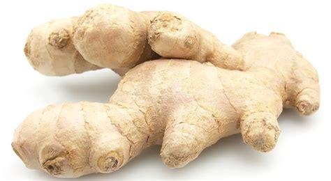 jeux de deco de chambre gingembre bienfaits et vertus quand planter du gingembre