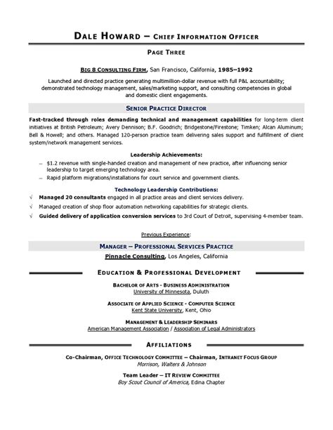 Sle Resume Newspaper Delivery Description by Cio Sle Resume Chief Information Officer Resume It