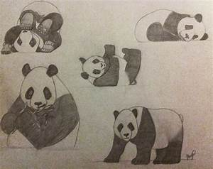 Panda Collection Pencil Drawing by InsanieJanie808 on ...
