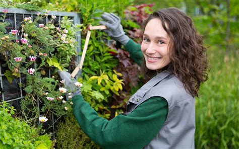 need a gardener spring is here and we need a landscape gardener bni guildford business